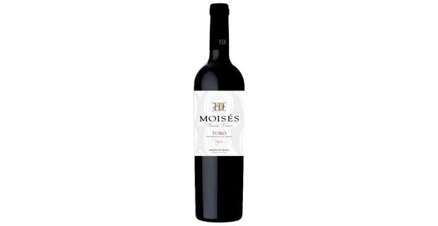 moises_2010