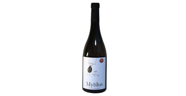 Mytilus 2014