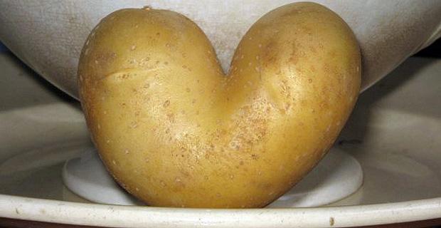 patata1